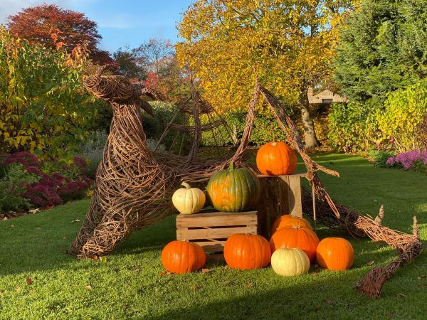 Woodland sculpture surrounded by pumpkins